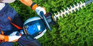 best hedge trimmer featured image