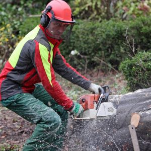 Top 6 Chainsaw Safety Tips to Avoid Accidents - ProGardenTips