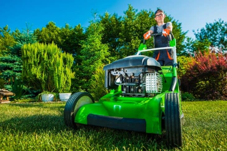 best gas powered lawn mower