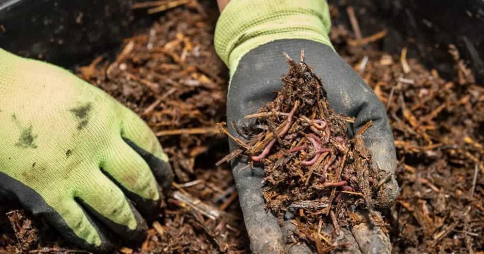 best chipper shredder for composting