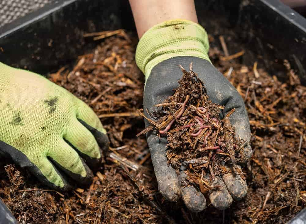 best chipper shredder for composting