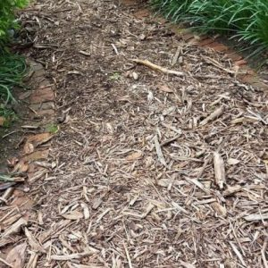 what to do with wood chips