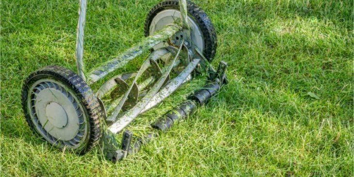 push reel lawn mower