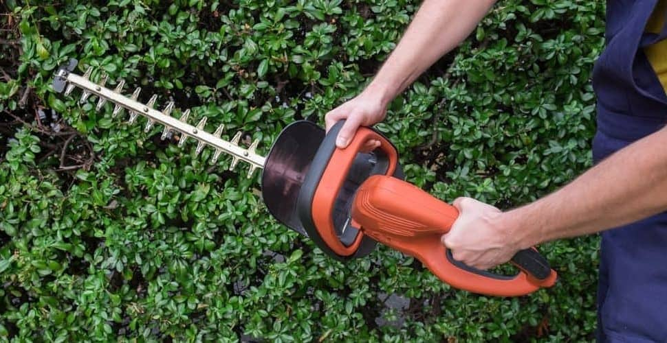 best hedge trimmer for small garden