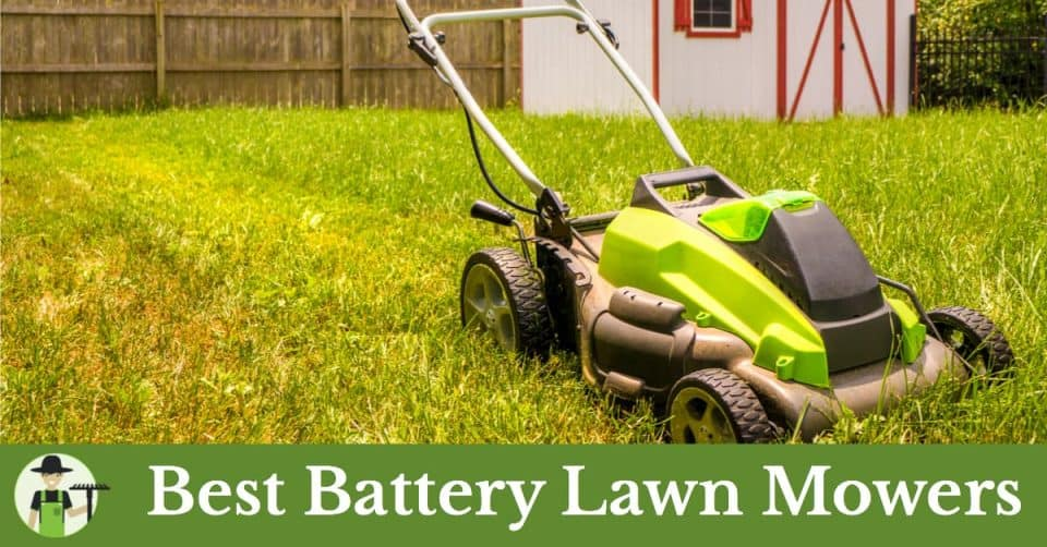 Best Lawn Mowers For Hills Progardentips