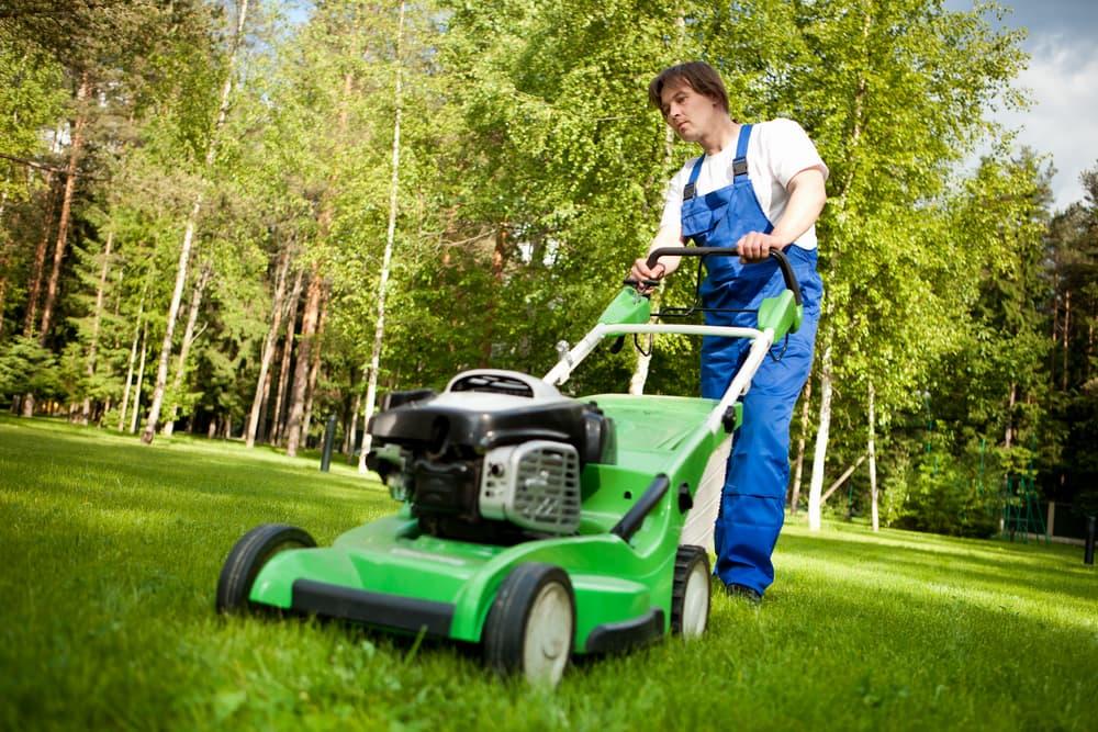 Best Lawn Mowers For Hills Progardentips