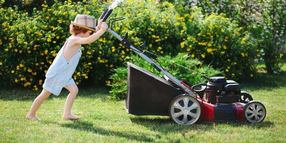 The Best Lawn Mower Featured