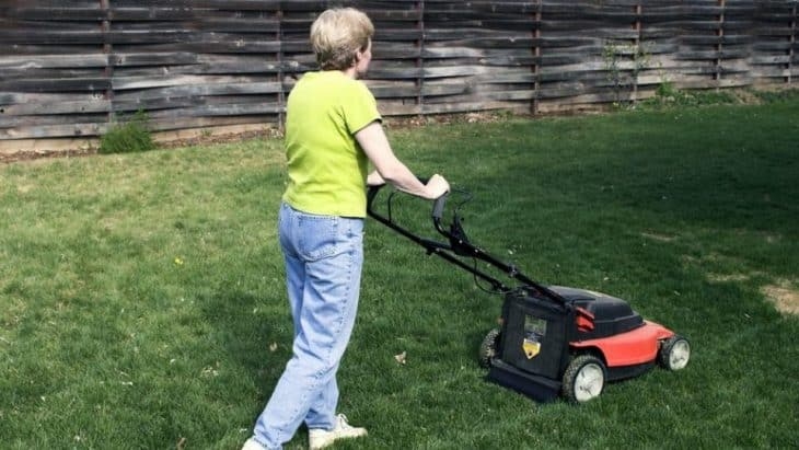 walk behind push lawn mower