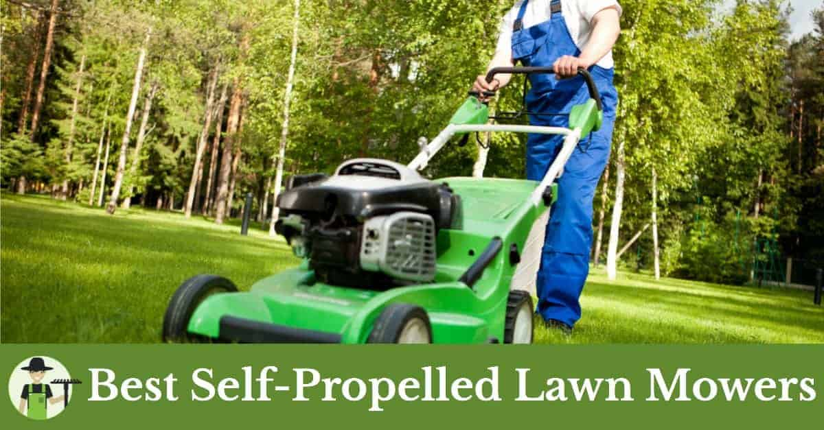 best self propelled lawn mower featured image