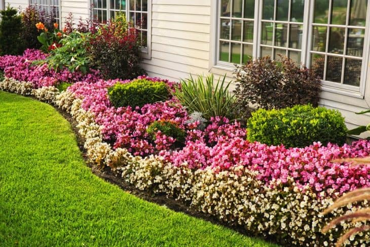 benefits of edging a lawn