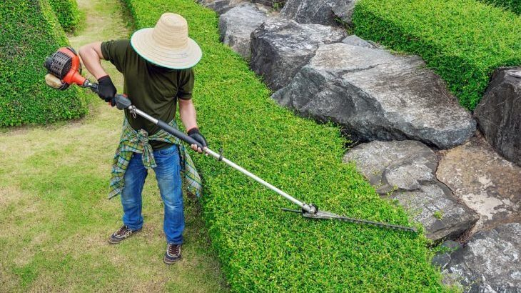 pole hedge trimmer reviews