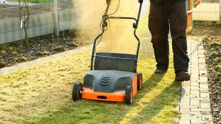 when to dethatch and aerate your lawn