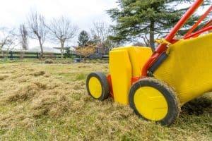 electric lawn dethatcher doing its job