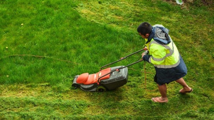 Best Lawn Mowers For Small Yards Progardentips
