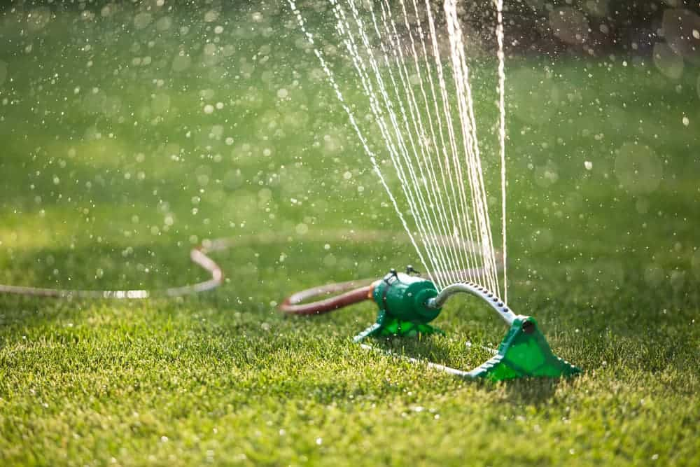 new lawn care watering is very important