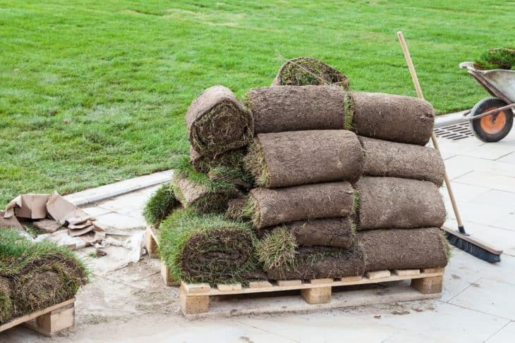 pallet full of grass sod