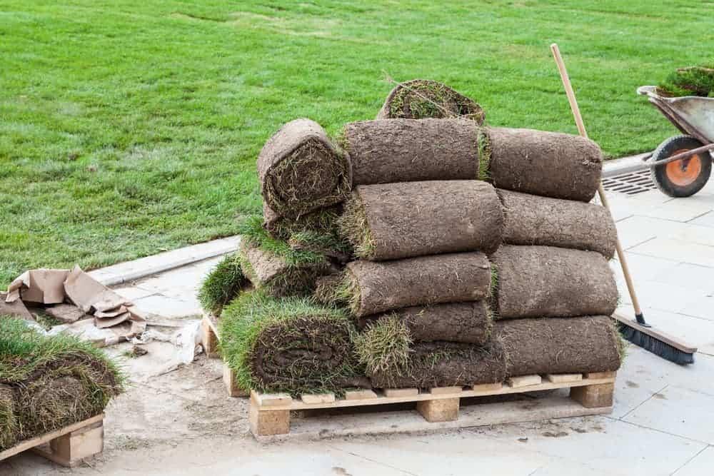 pallet full of grass sod