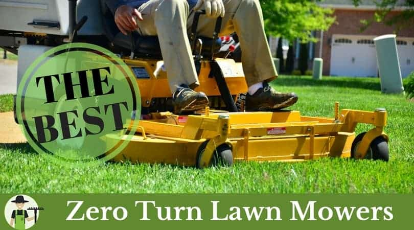 best zero turn lawn mower for the money