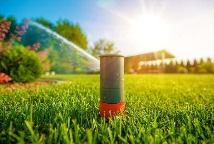 pop up sprinkler in lawn