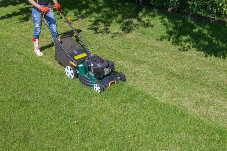 mowing stripes with the gas powered self propelled lawn mower