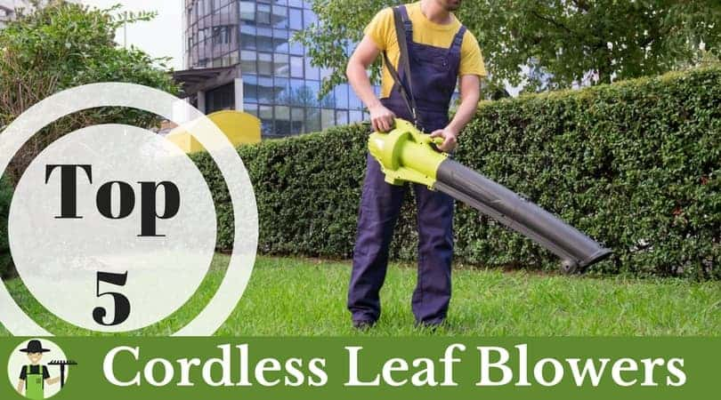 best cordless battery powered leaf blower featured image