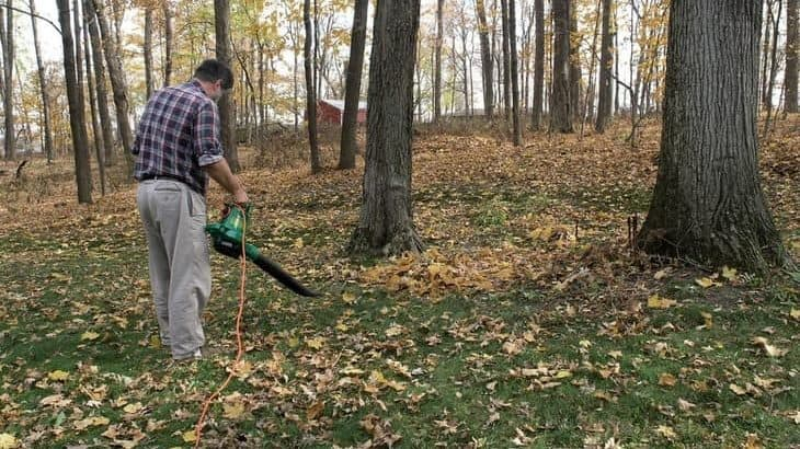 corded vs cordless leaf blowers