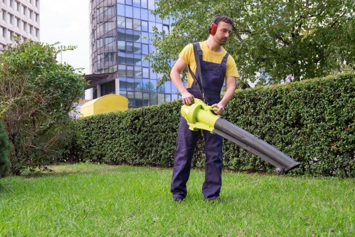 best cordless battery powered leaf blower reviews