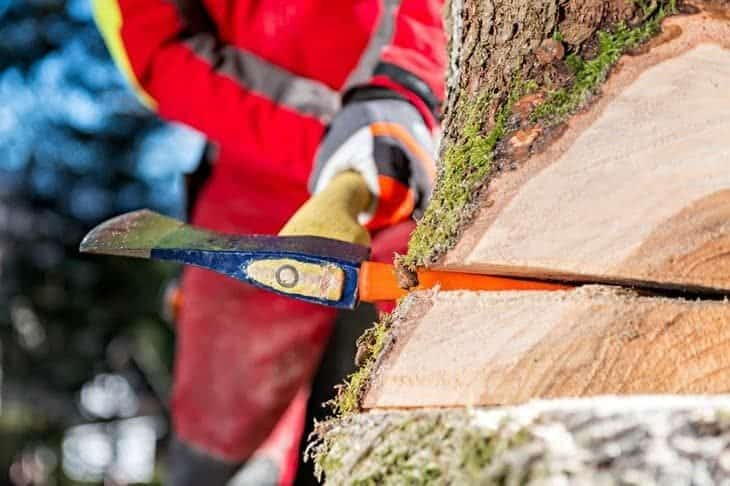 use felling wedges whilst cutting down trees