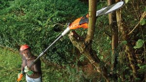 black and decker cordless pole chainsaw review