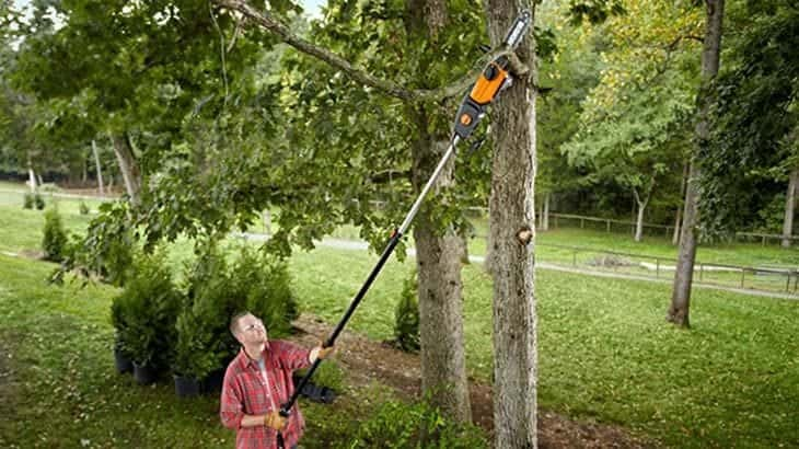 benefits of cordless pole chainsaws
