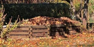 how to compost fallen leaves