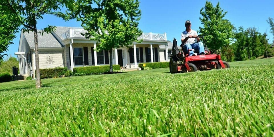 best lawn mower for big yard