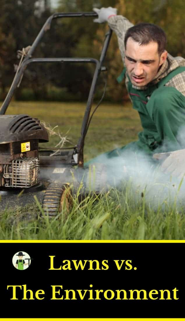 Are lawns bad for the environment