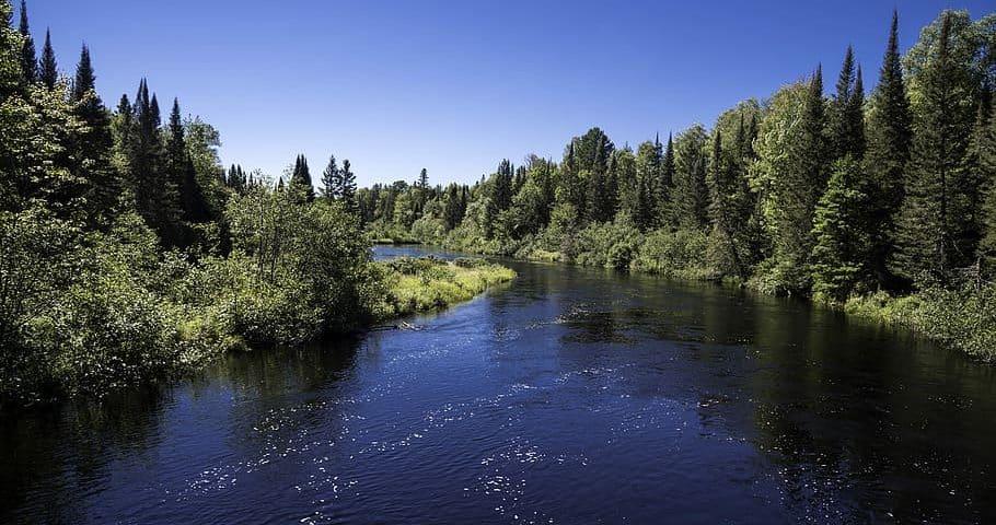 Van-Riper-State-Park-Michigan