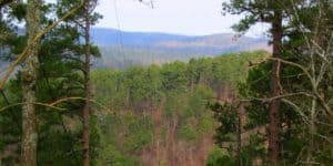 Ouachita Mountains Hot Springs National Park Arkansas