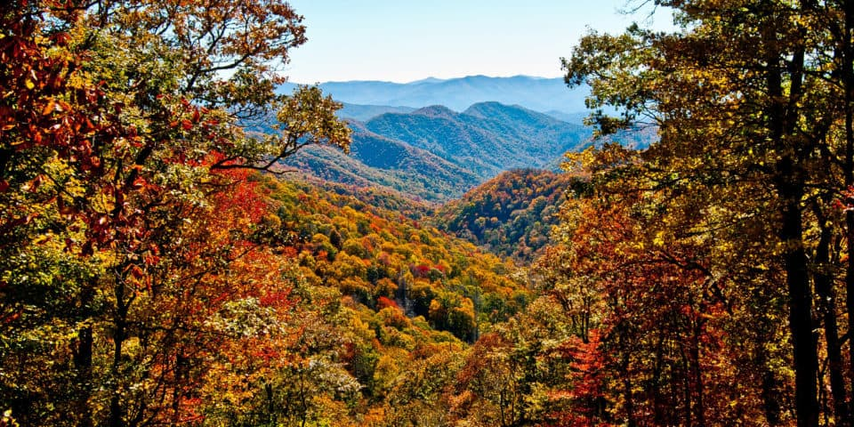 autumn great smoky mountains national park tennessee