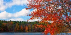 new england foliage lake fall