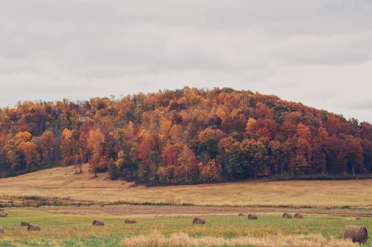 Autumn colors in Kingston Ohio