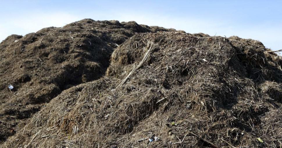 Big heap of compost