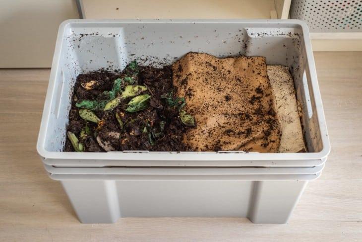 DIY worm farm composting bin in an apartment 1