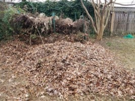 Leaf compost pile in garden
