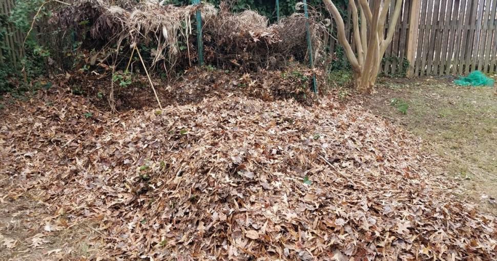 Leaf compost pile in garden