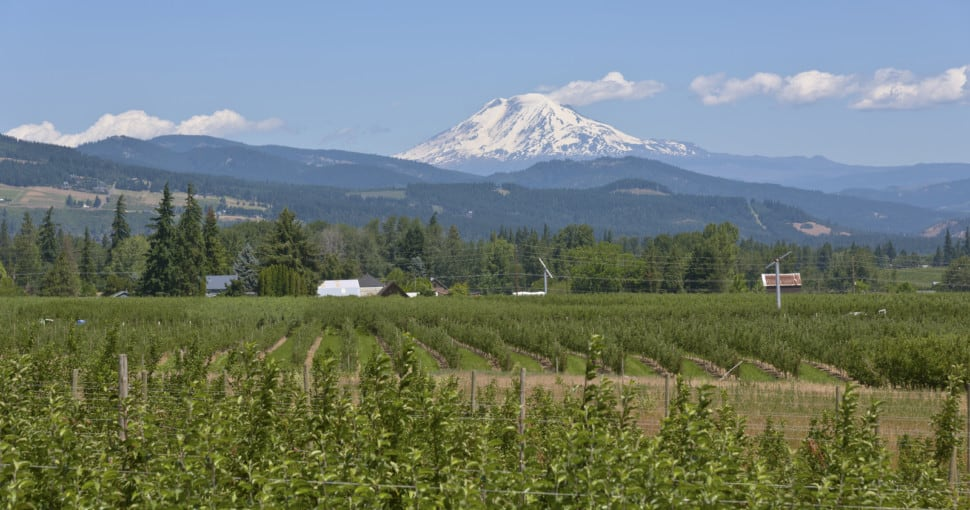 Mt. Adams and Hood River valley Oregon