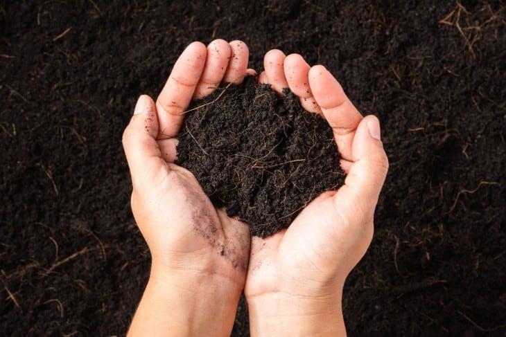black compost soil