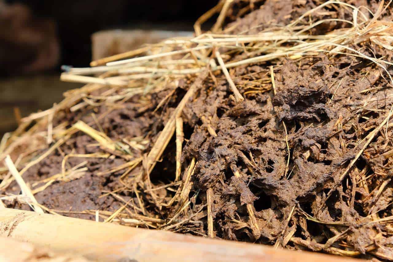 farmyard compost manure