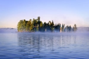 Island with pine trees in Algonquin park Ontario