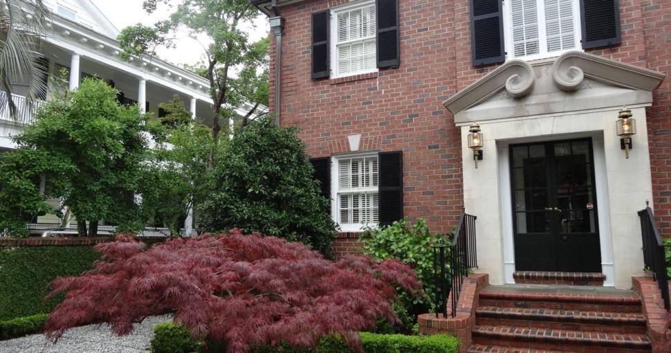 Japanese maple in the heritage area of Charleston South Carolina