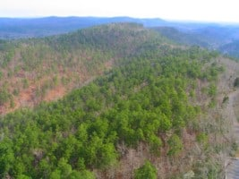 Ouachita Mountains in Hot Springs National Park Arkansas