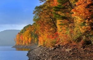 Scenic autumn landscape in Allegheny national forest of Pennsylvania