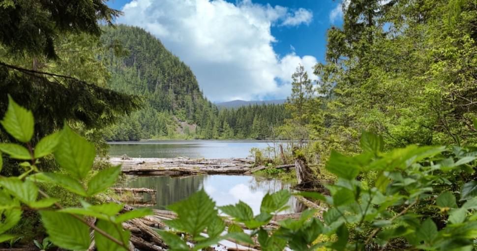 Mountain Lake and forest in the wilderness of Washington State